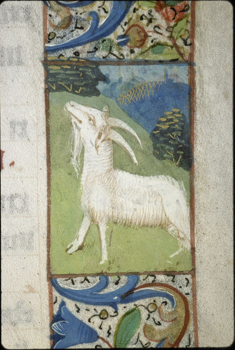Lyon, Bibl. mun., ms. 5996, f. 012 - vue 1