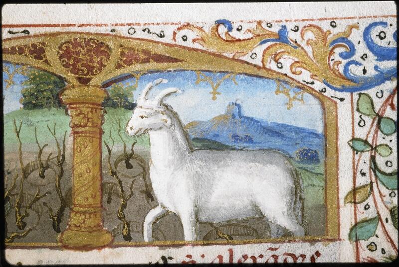Lyon, Bibl. mun., ms. 5997, f. 003 - vue 3