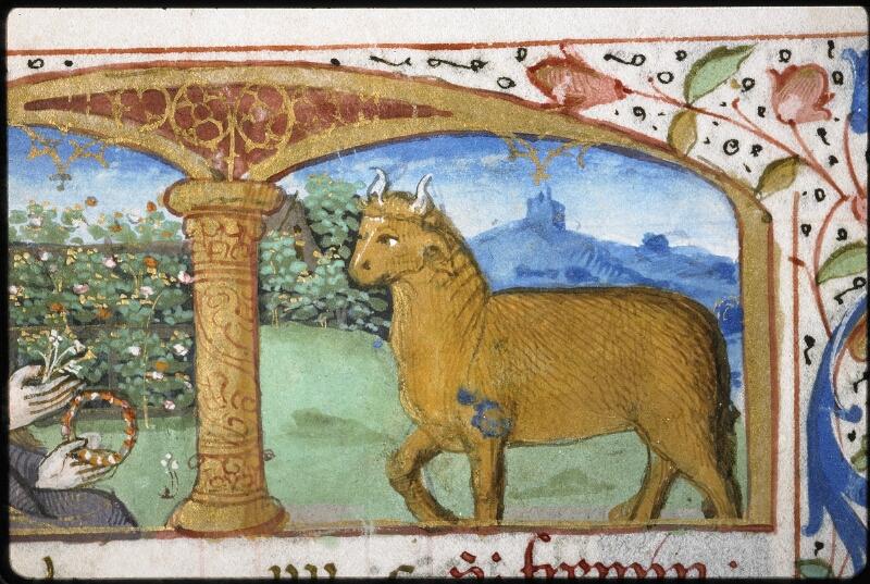 Lyon, Bibl. mun., ms. 5997, f. 003v - vue 3