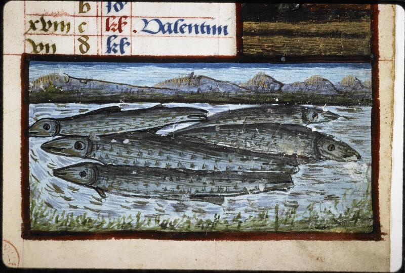 Lyon, Bibl. mun., ms. 6000, f. 003 - vue 4