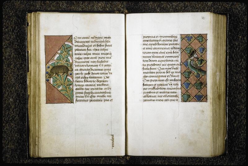 Lyon, Bibl. mun., ms. 6000, f. 029v-030