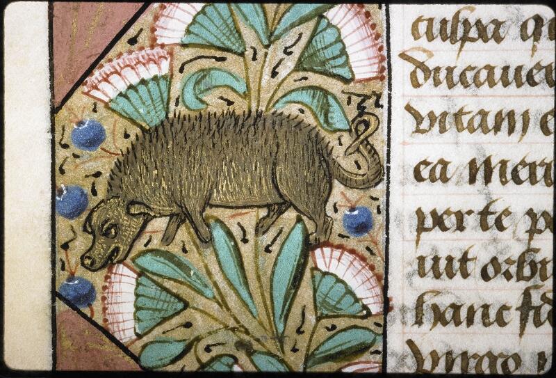 Lyon, Bibl. mun., ms. 6000, f. 029v