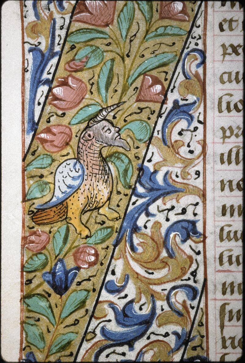 Lyon, Bibl. mun., ms. 6000, f. 031v