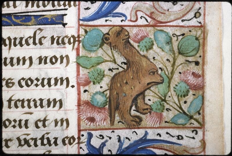 Lyon, Bibl. mun., ms. 6000, f. 037