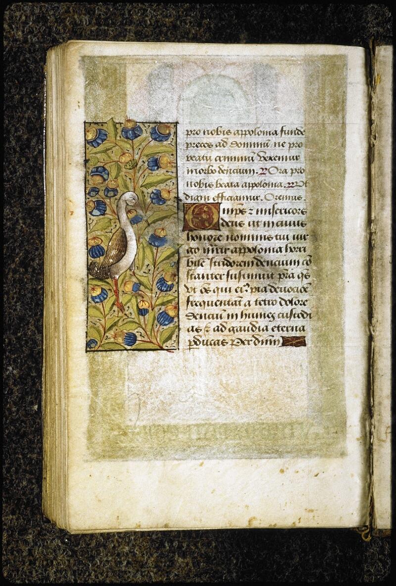 Lyon, Bibl. mun., ms. 6000, f. 173v - vue 1