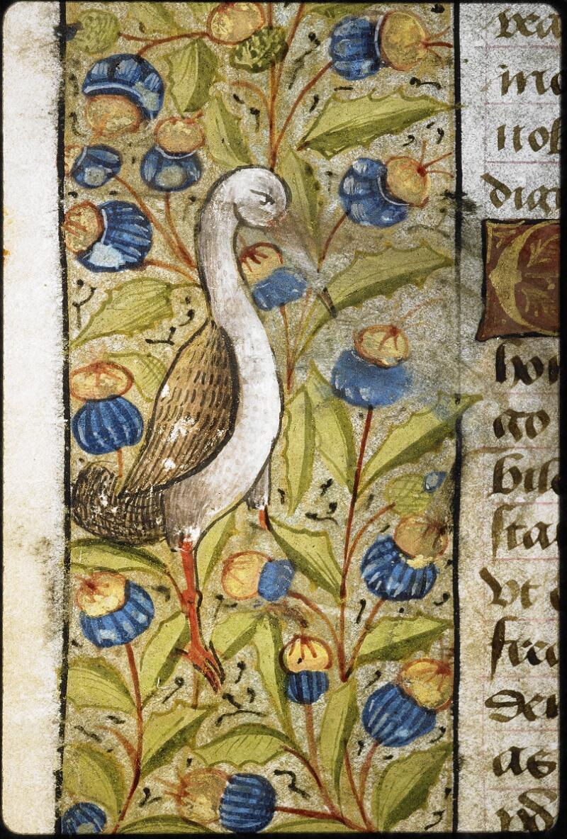 Lyon, Bibl. mun., ms. 6000, f. 173v - vue 2