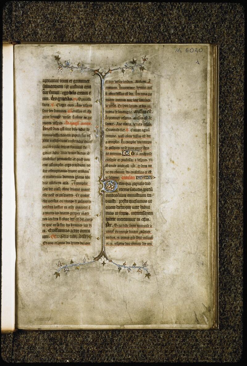 Lyon, Bibl. mun., ms. 6020, f. 001 - vue 2
