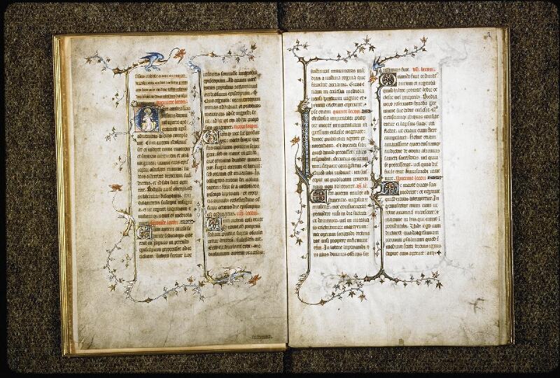 Lyon, Bibl. mun., ms. 6020, f. 001v-002