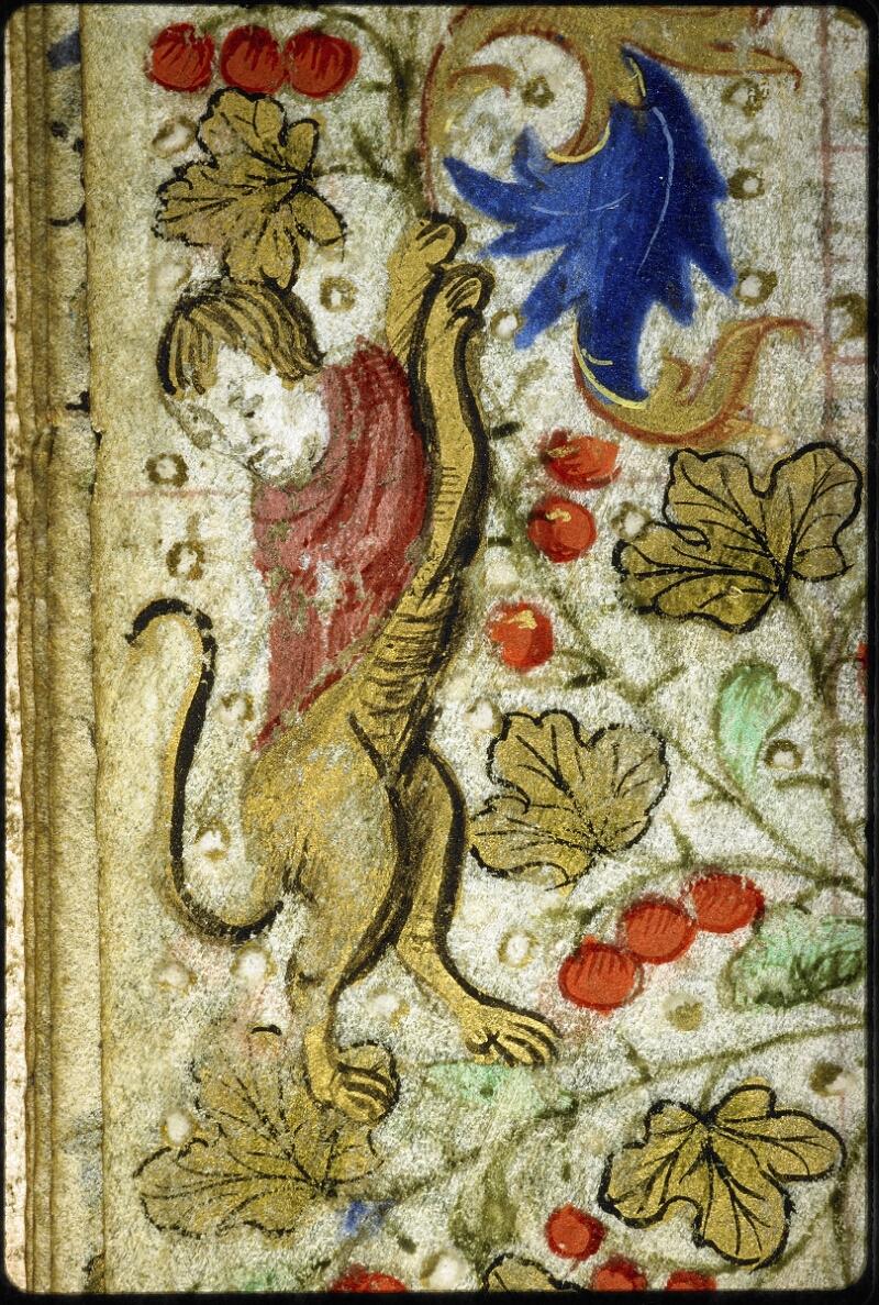 Lyon, Bibl. mun., ms. 6022, f. 005v