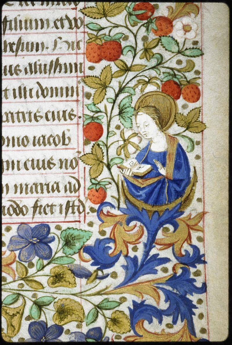 Lyon, Bibl. mun., ms. 6022, f. 016