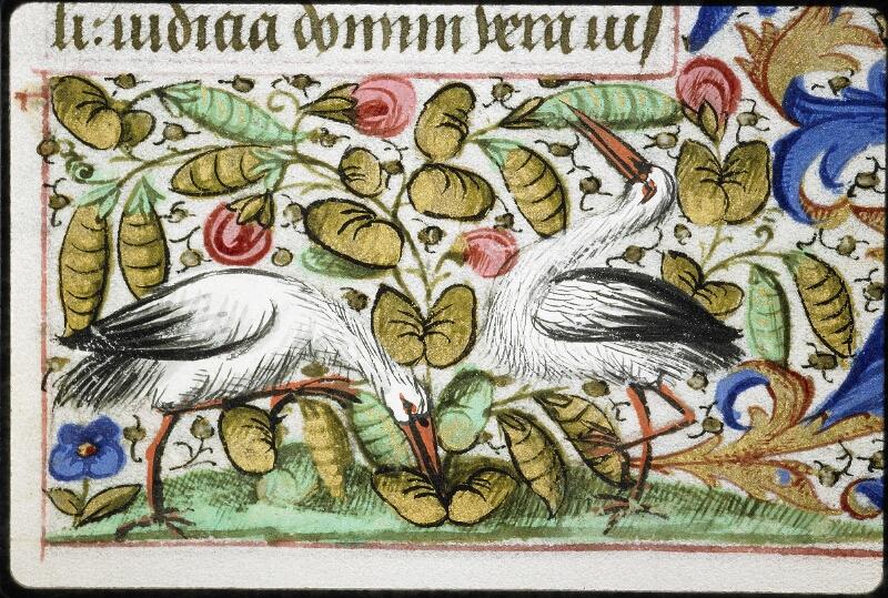 Lyon, Bibl. mun., ms. 6022, f. 035