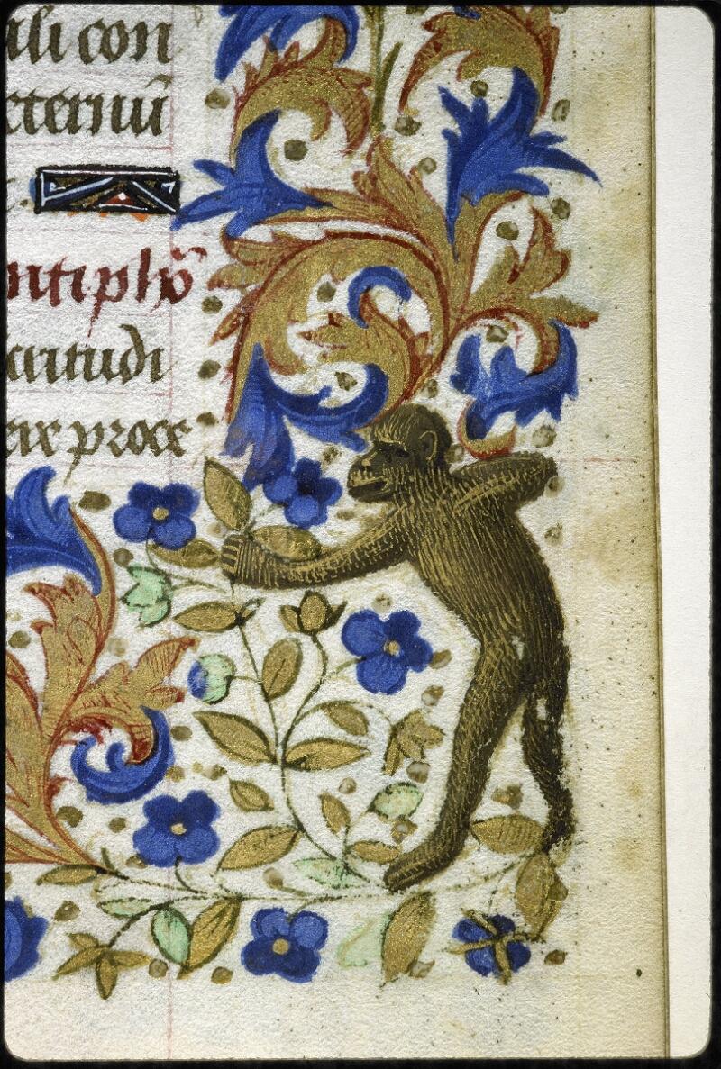 Lyon, Bibl. mun., ms. 6022, f. 041