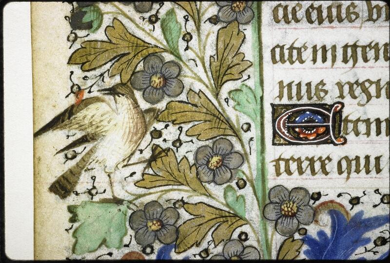 Lyon, Bibl. mun., ms. 6022, f. 045v