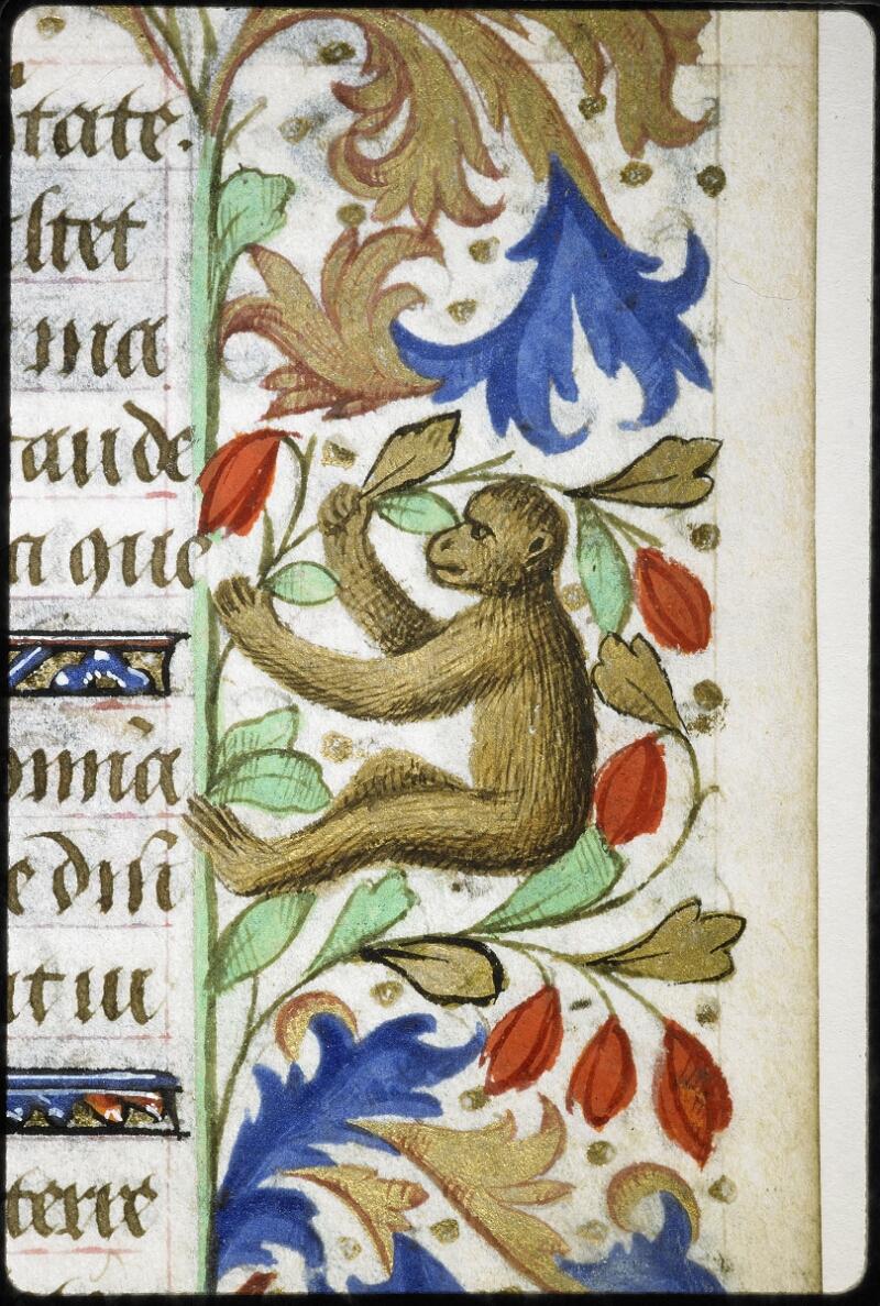 Lyon, Bibl. mun., ms. 6022, f. 046