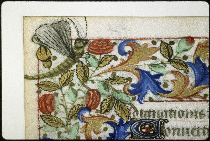 Lyon, Bibl. mun., ms. 6022, f. 074v - vue 1