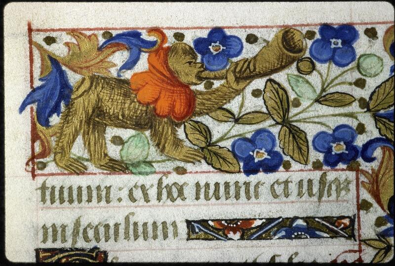 Lyon, Bibl. mun., ms. 6022, f. 080 - vue 1