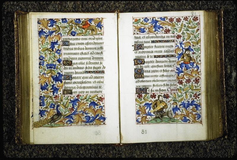 Lyon, Bibl. mun., ms. 6022, f. 080v-081