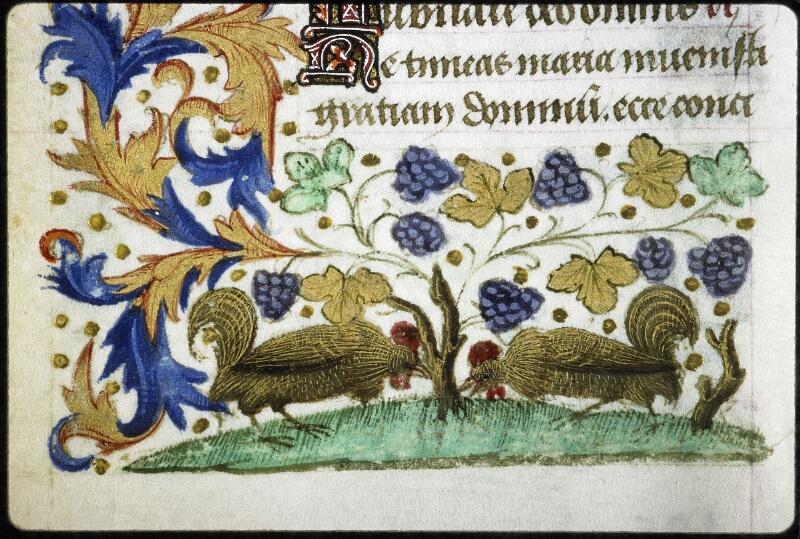 Lyon, Bibl. mun., ms. 6022, f. 105v