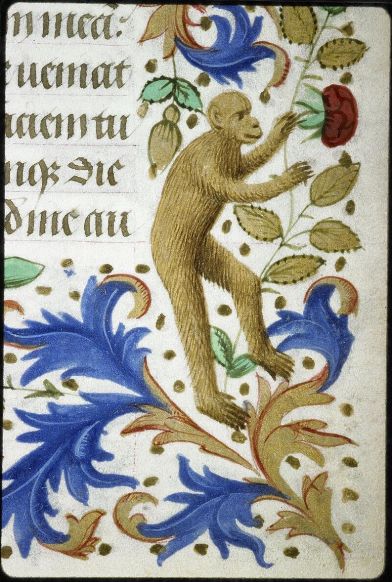 Lyon, Bibl. mun., ms. 6022, f. 133