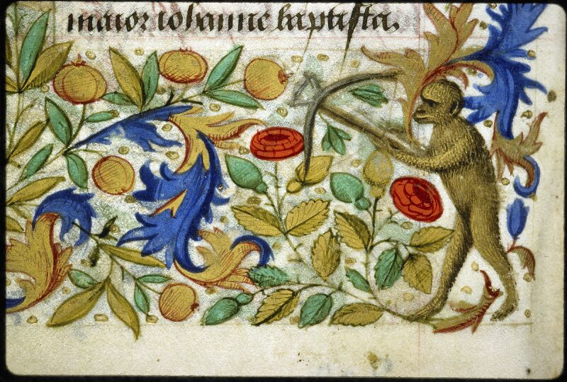 Lyon, Bibl. mun., ms. 6022, f. 204v - vue 2
