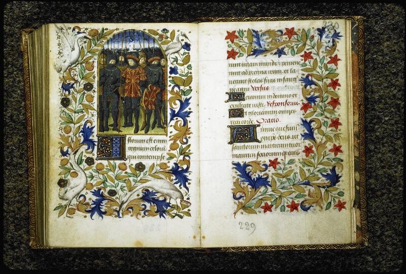 Lyon, Bibl. mun., ms. 6022, f. 229v-230