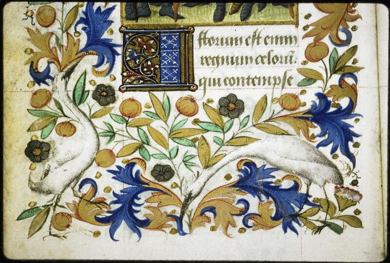 Lyon, Bibl. mun., ms. 6022, f. 229v - vue 2
