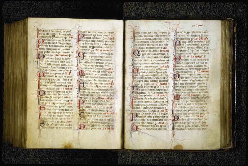 Lyon, Bibl. mun., ms. 6699, f. 306v-307