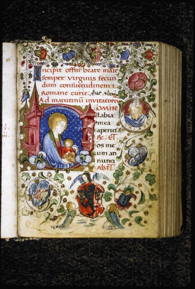 Lyon, Bibl. mun., ms. Palais des Arts 020, f. 011 - vue 2