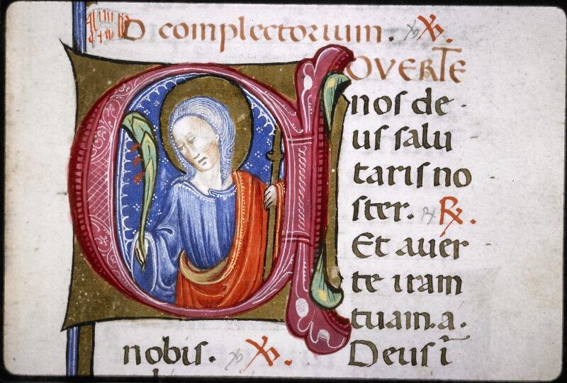 Lyon, Bibl. mun., ms. Palais des Arts 020, f. 098