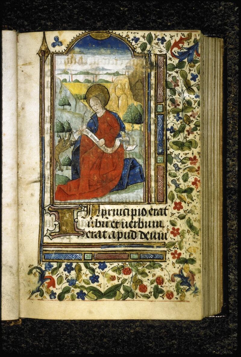 Lyon, Bibl. mun., ms. Palais des Arts 021, f. 013 - vue 2
