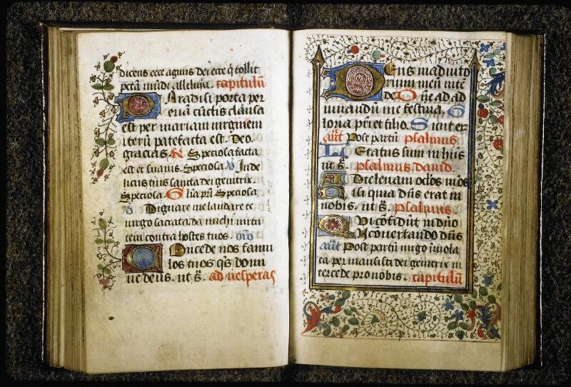 Lyon, Bibl. mun., ms. Palais des Arts 021, f. 049v-050