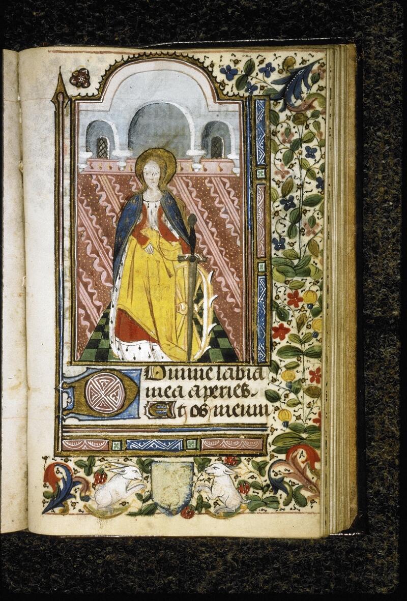 Lyon, Bibl. mun., ms. Palais des Arts 021, f. 117 - vue 1
