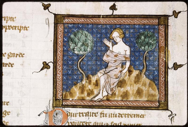 Lyon, Bibl. mun., ms. Palais des Arts 023, f. 005v - vue 2