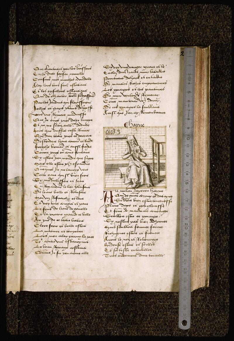 Lyon, Bibl. mun., ms. Palais des Arts 025, f. 002 - vue 1