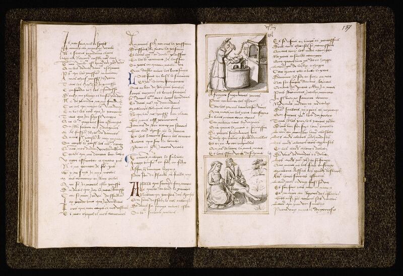 Lyon, Bibl. mun., ms. Palais des Arts 025, f. 136v-137