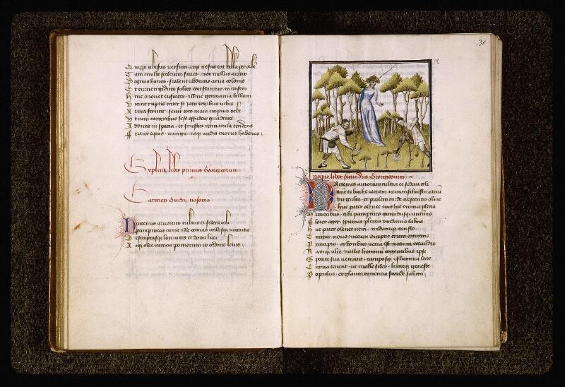 Lyon, Bibl. mun., ms. Palais des Arts 027, f. 029v-030
