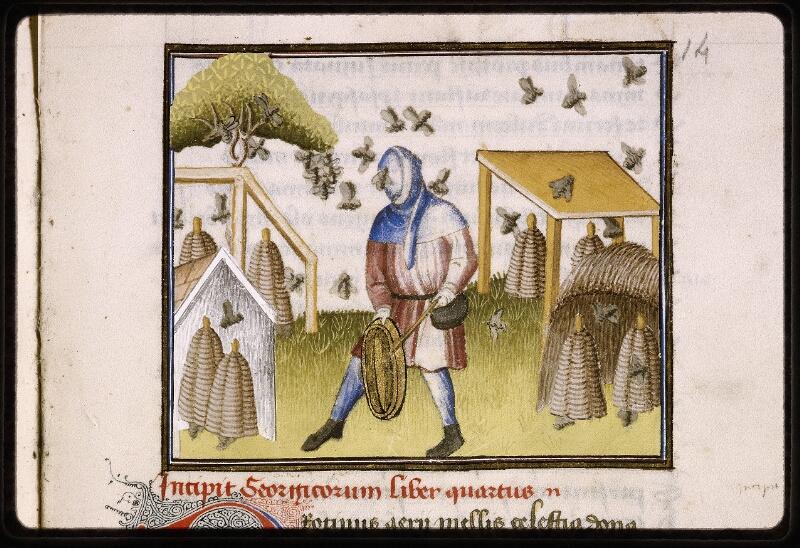 Lyon, Bibl. mun., ms. Palais des Arts 027, f. 051