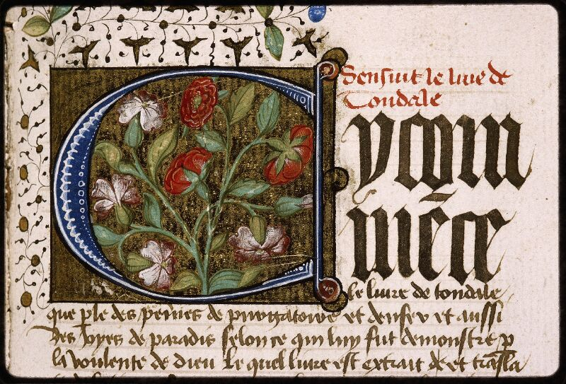 Lyon, Bibl. mun., ms. Palais des Arts 028, f. 133