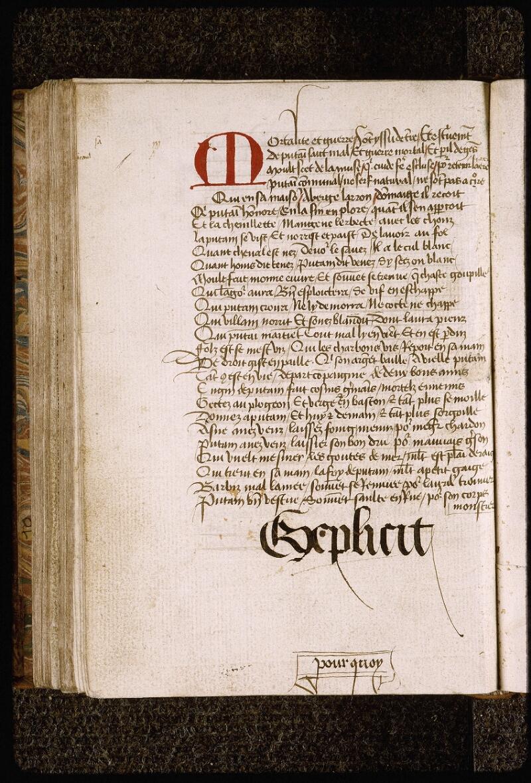 Lyon, Bibl. mun., ms. Palais des Arts 028, f. 154v