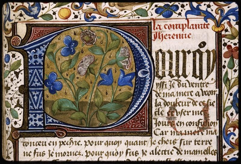 Lyon, Bibl. mun., ms. Palais des Arts 028, f. 156 - vue 1