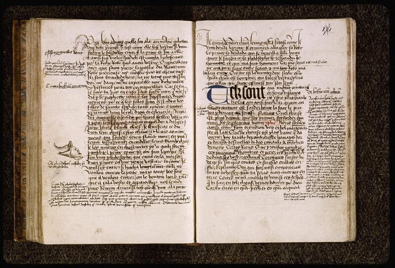Lyon, Bibl. mun., ms. Palais des Arts 028, f. 170v-171