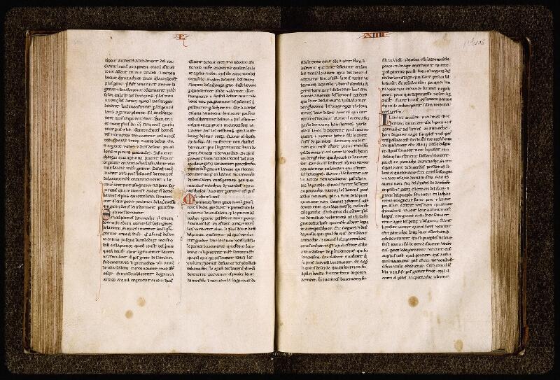 Lyon, Bibl. mun., ms. Palais des Arts 029, f. 105v-106