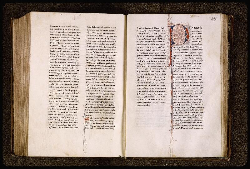 Lyon, Bibl. mun., ms. Palais des Arts 029, f. 296v-297