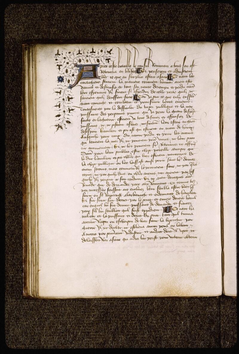 Lyon, Bibl. mun., ms. Palais des Arts 031, f. 042v