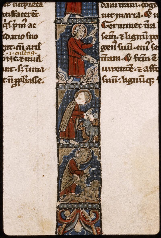 Lyon, Bibl. mun., ms. Palais des Arts 035, f. 003 - vue 3