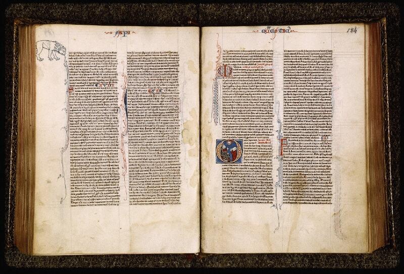 Lyon, Bibl. mun., ms. Palais des Arts 035, f. 183v-184
