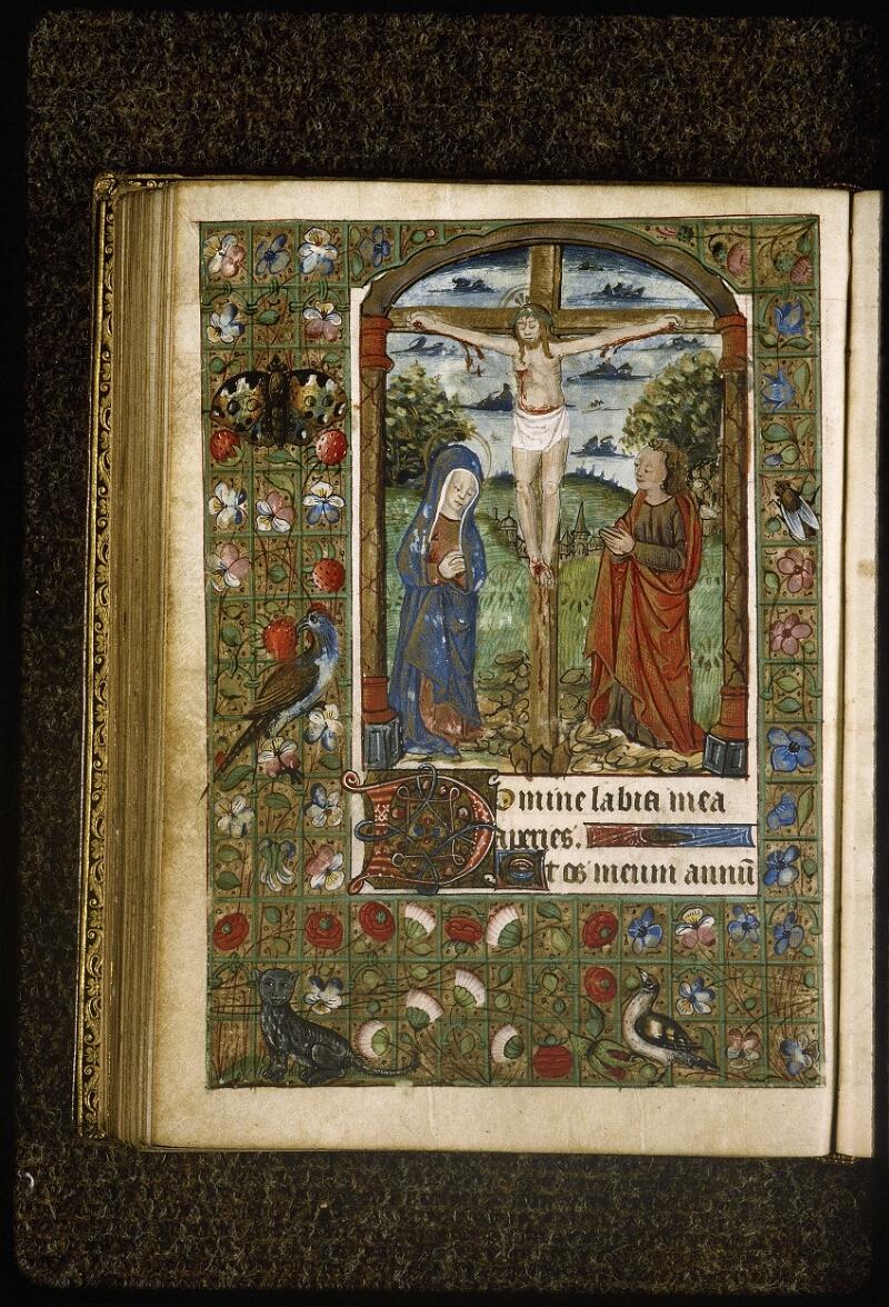 Lyon, Bibl. mun., ms. Palais des Arts 038, f. 064v - vue 1