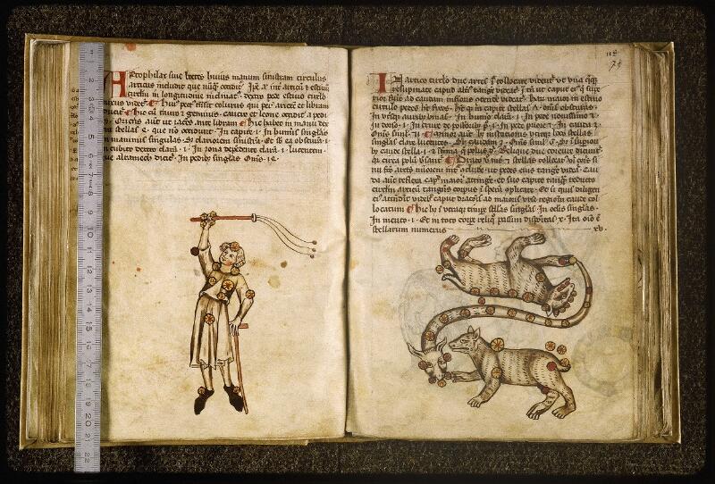Lyon, Bibl. mun., ms. Palais des Arts 045, f. 072v-073 - vue 1