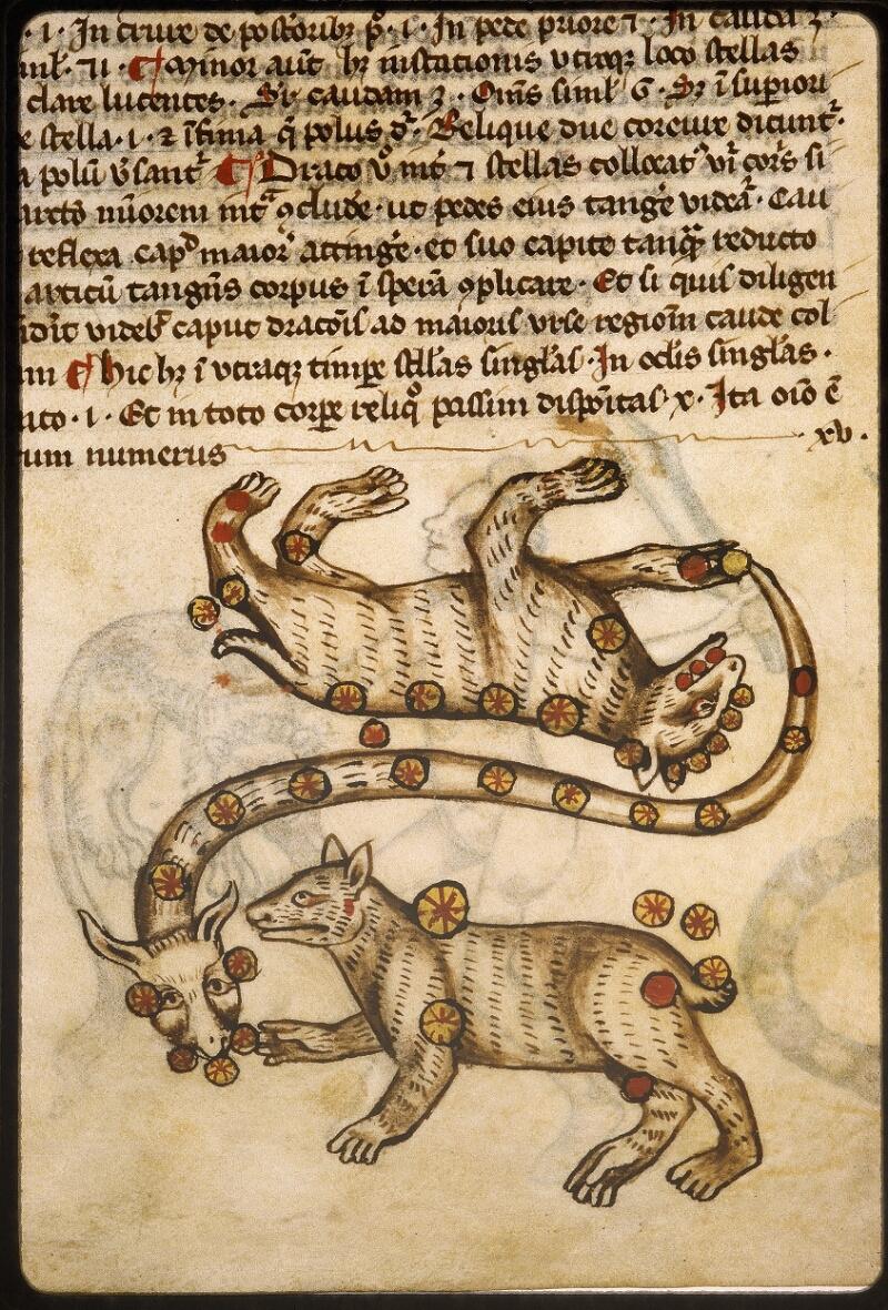Lyon, Bibl. mun., ms. Palais des Arts 045, f. 073