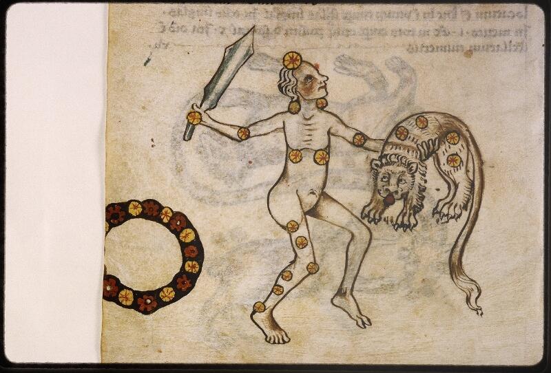 Lyon, Bibl. mun., ms. Palais des Arts 045, f. 073v